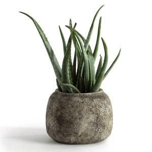 Vase en ciment Ø28 cm, Sérax AM.PM