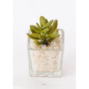 Plante grasse artificielle succulente cactee en pot verre et cailloux blanc Vert L - choisissez votre modle: Vert ARTIF-DECO