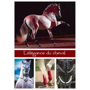 Puzzle 1000 pièces : L'élégance du cheval NATHAN