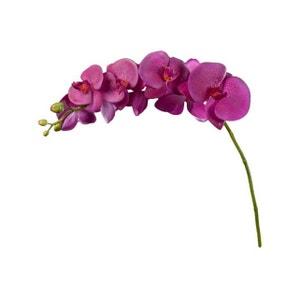 Fleur Artificielle Phalaenopsis fuschia SILEA