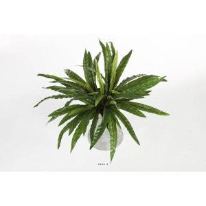 Fougere Asplenum 55 feuilles H 60 cm artificiel en piquet ARTIFICIELLES