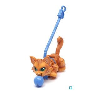 Pet Parade - 1 chat roux Sibérie - GIOPTC004 GIOCHI PREZIOSI