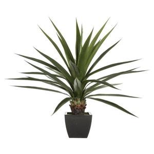 Plante verte exotique dans son pot noir H130cm PIER IMPORT