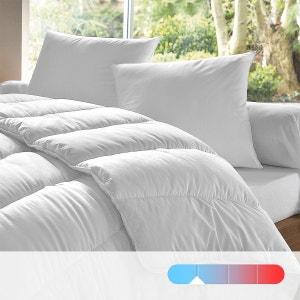 Couette DODO 100% polyester, 175 g/m², qualité standard DODO