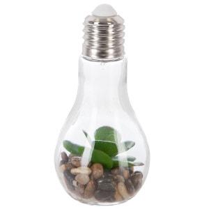 Décoration lumineuse Plante en ampoule - H. 18,5 cm - Grandes feuilles arrondies ATMOSPHERA
