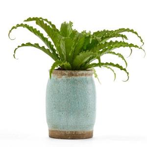Cache-pot céramique H30 cm, Euphyllia AM.PM