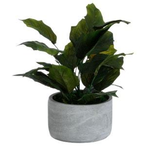 Plante artificielle avec pot en ciment - 16 x 35 cm - Vert ATMOSPHERA