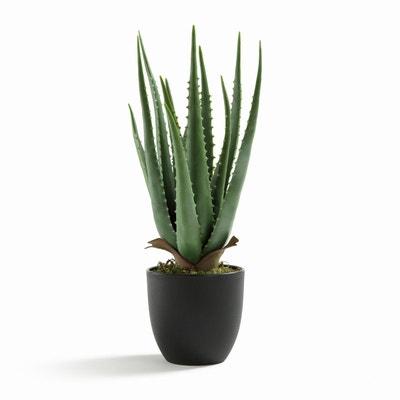 Plante aloe vera artificielle H40 cm, Canary Plante aloe vera artificielle H40 cm, Canary AM.PM