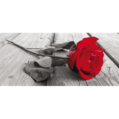 Red rose, photo murale intissée, 202 x 90 cm, 1 part WALLTASTIC
