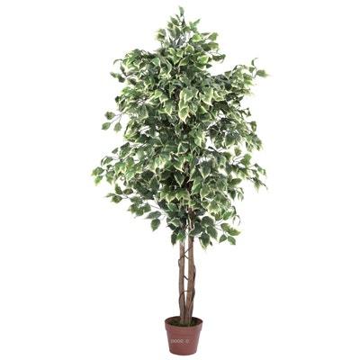 Plastique Arbre Vert pour la D/écoration Bureau /à Domicile YQing Artificiel Ficus Lyrata Arbre Pot Deco,120cm Ficus Benjamina Plante Figue Arbre