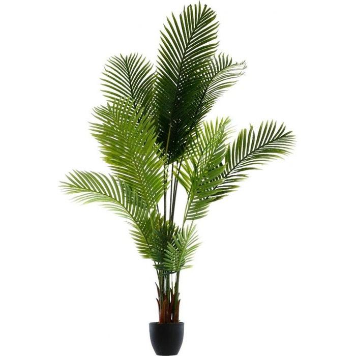 Palmier dans son pot en ciment noir h170cm vert pier for Palmier dans pot
