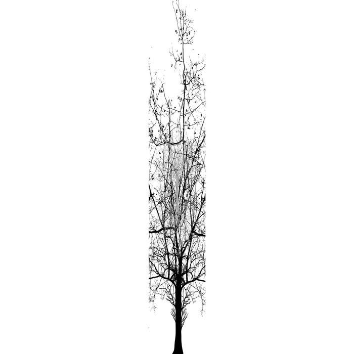 papier peint intiss arbre d 39 hiver multicolore graham et. Black Bedroom Furniture Sets. Home Design Ideas