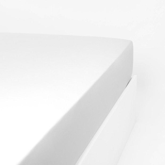 Drap Housse Coton Jersey Extensible Lit Double Articule Papillon Linandelle La Redoute