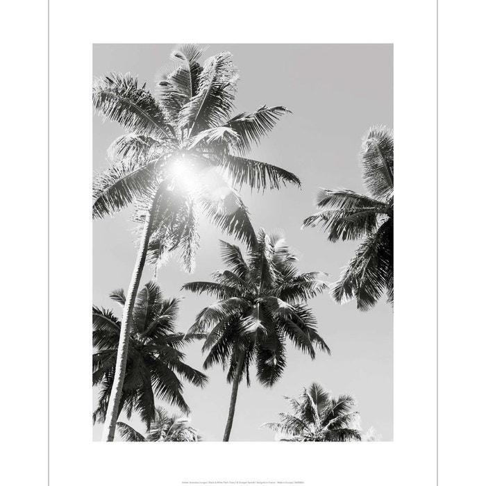 affiche noir et blanc photo vintage palmiers multicolore. Black Bedroom Furniture Sets. Home Design Ideas