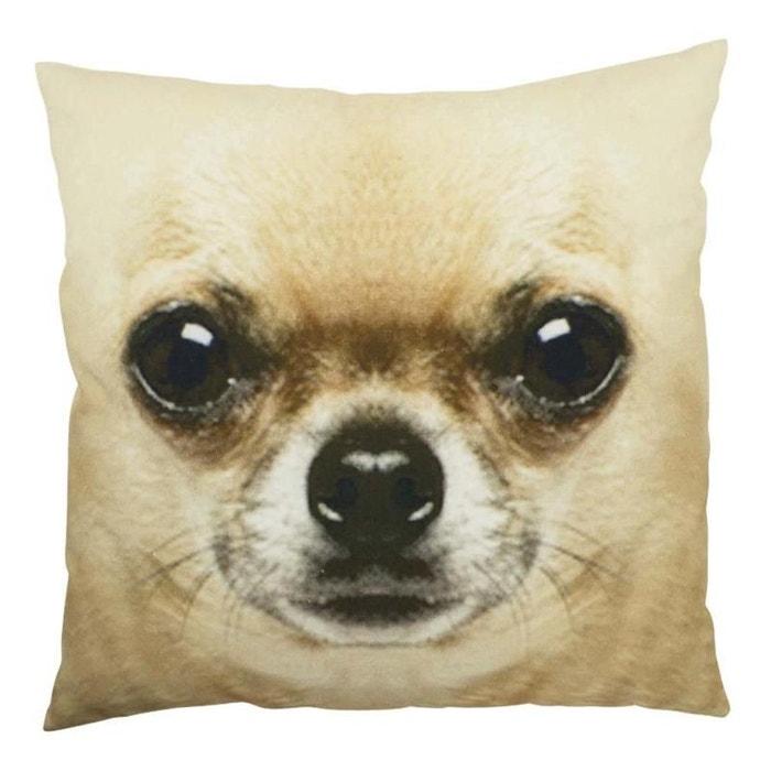 coussin en coton chihuahua beige natacha b la redoute. Black Bedroom Furniture Sets. Home Design Ideas