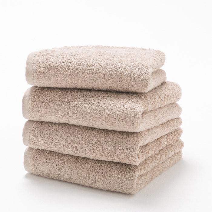 Image Pack of 4 Cotton Guest Towels, 500g/m² SCENARIO