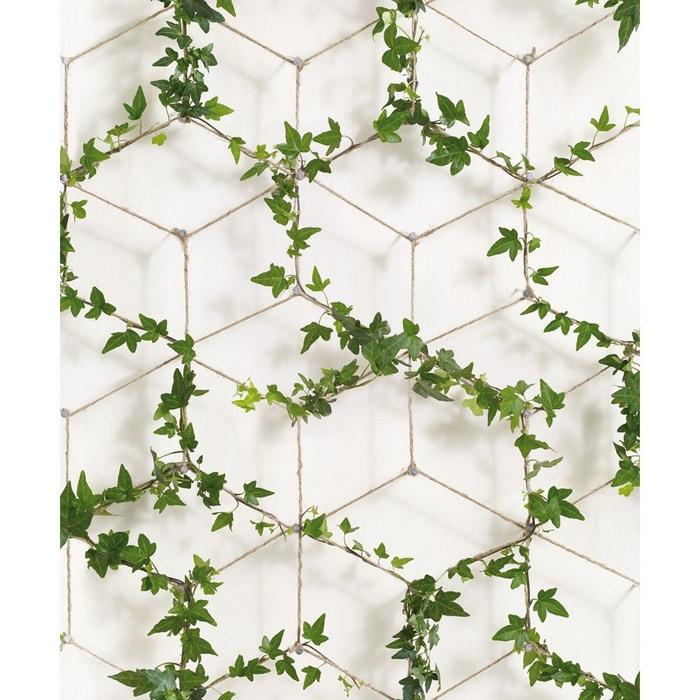 papier peint lierre sur corde graphique vert ch vrefeuille koziel la redoute. Black Bedroom Furniture Sets. Home Design Ideas