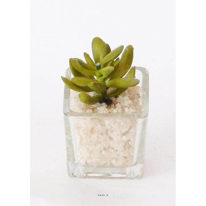 plante grasse artificielle succulente cactee en pot verre et cailloux blanc vert l choisissez. Black Bedroom Furniture Sets. Home Design Ideas