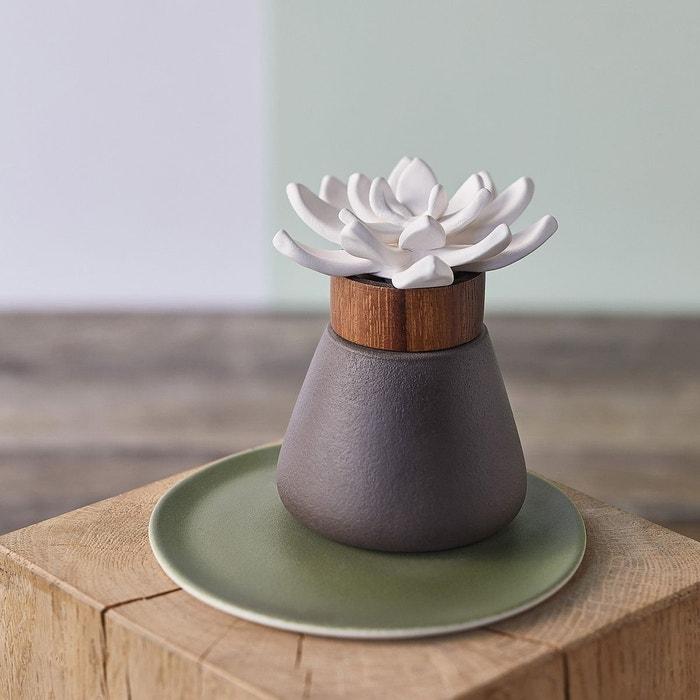diffuseur de parfum bigardier nature et decouvertes la. Black Bedroom Furniture Sets. Home Design Ideas