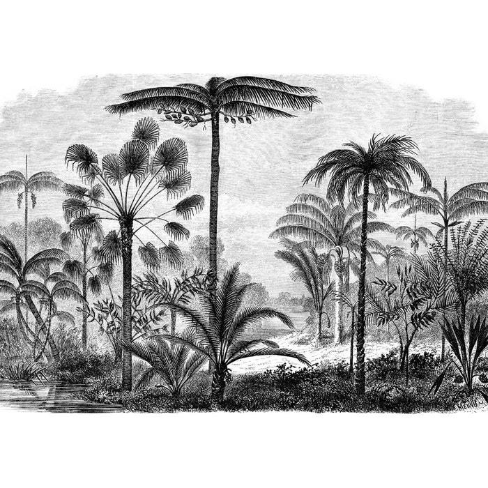 Papier Peint Panoramique De Ninon
