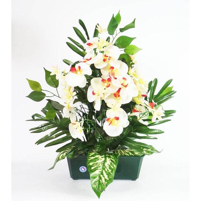 composition jardiniere de mini fleurs et orchid e. Black Bedroom Furniture Sets. Home Design Ideas