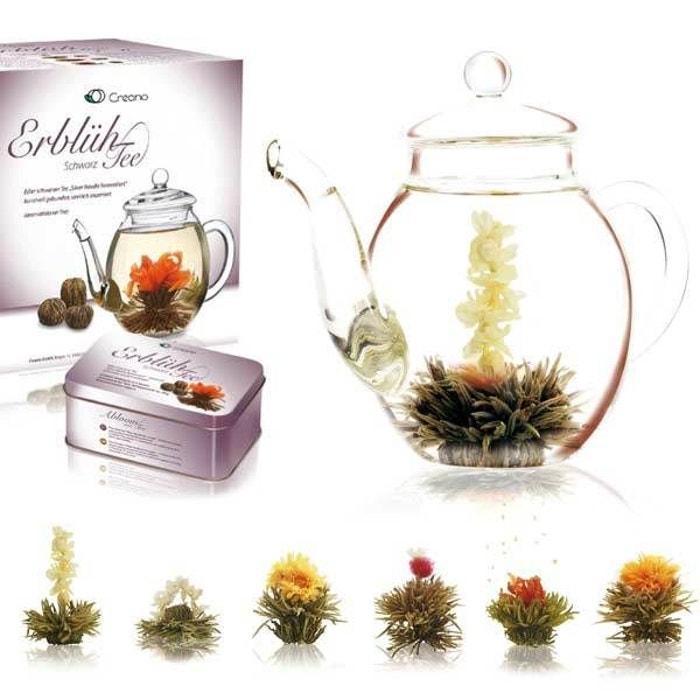 Coffret théière et 6 fleurs de thé noir - coffret théière + 6 fleurs de thé  Creano   La Redoute 0a699e993df