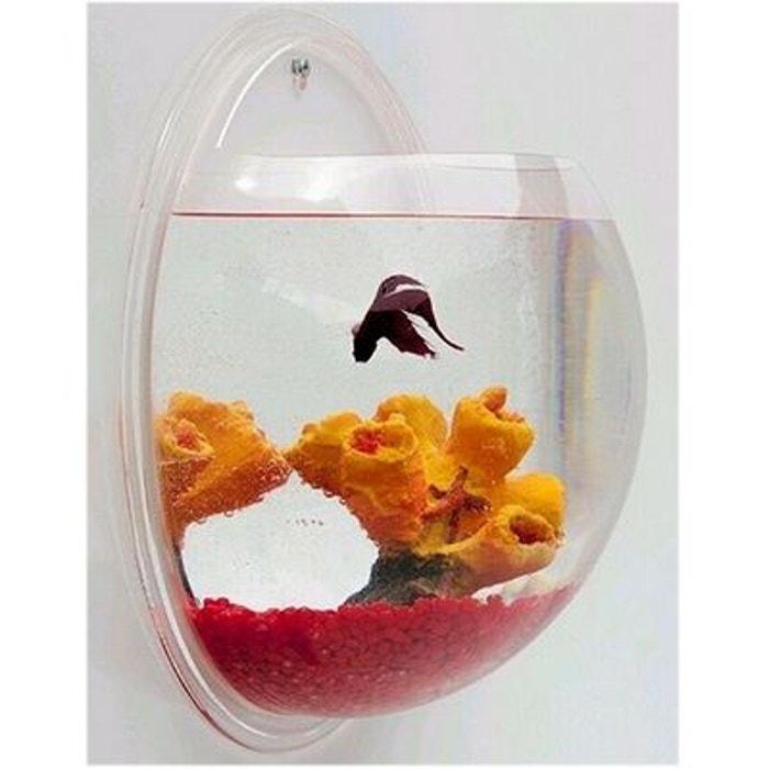 Aquarium mural demi sph re acrylique transparent id e for Aquarium boule