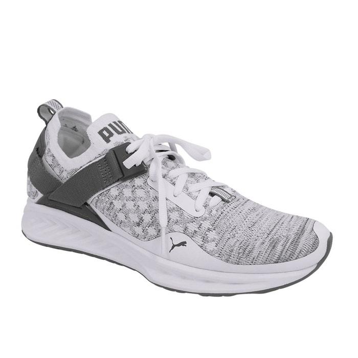 Chaussures ignite evoknit low gris Puma | La Redoute