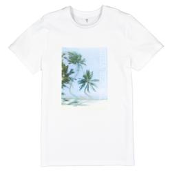 Camiseta estampada de algodón orgánico 10-18 años