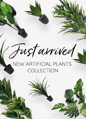 New Plants Collection